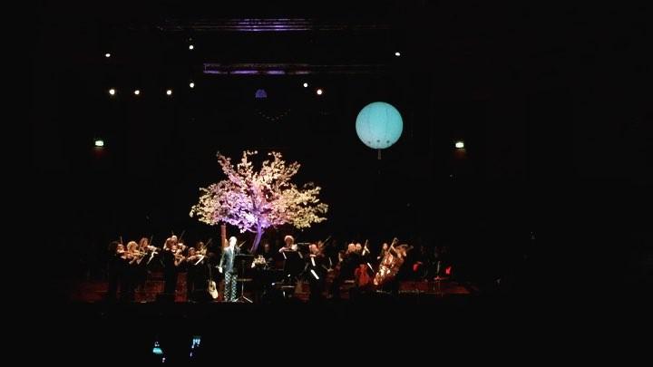 Rufus Wainwright zingt Joni Mitchell met Amsterdam Sinfonietta 👌🏼